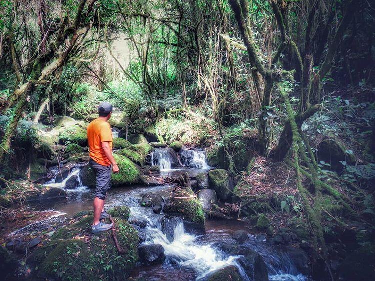 excursionismo y senderismo