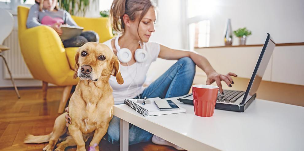 Teletrabajo: empleo en remoto desde casa